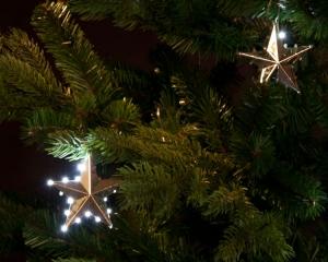 Snowfall - Silver Star (5x 20 LEDs)